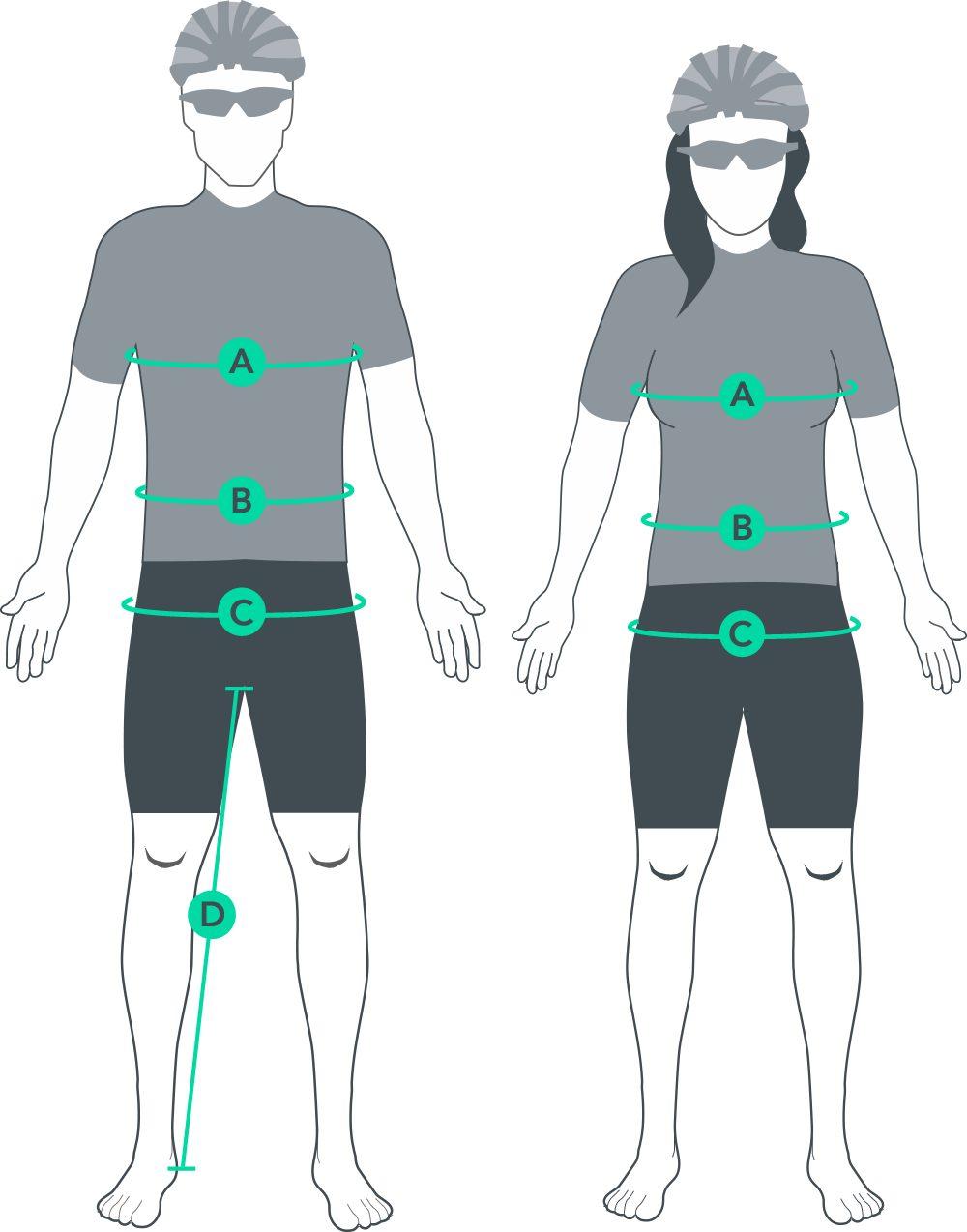 Bib Shorts size guide